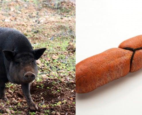 cerdo-negro-sobrassada